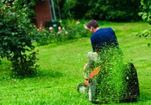 Le mulching - Home Robots