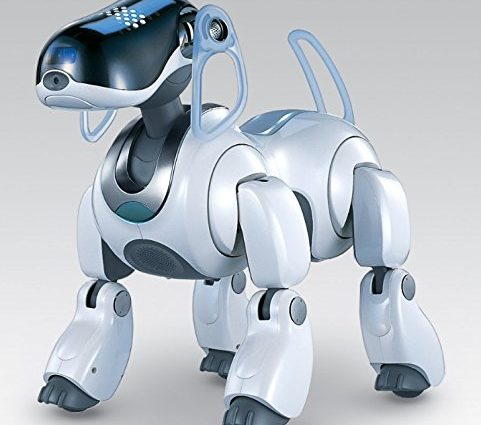 Des robots pour votre maison - Home Robots
