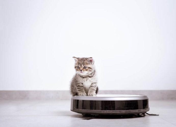 Test du robot aspirateur-Wi-Fi Roomba 675 iRobot - Home Robots